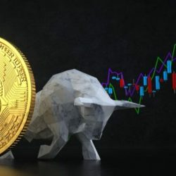 Belajar tentang perdagangan Bitcoin